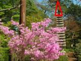 110424_観音寺の石塔.jpg