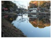 111224_結縁寺.jpg