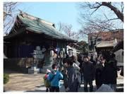 120108_松戸神社.jpg