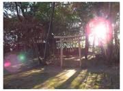 120114_弧座山神社.jpg