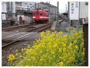 120226_銚子電鉄仲ノ町駅.jpg
