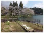 120415_八鶴湖.jpg