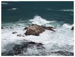 120505_太海浜の磯.jpg