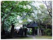 120826_西輪寺.jpg