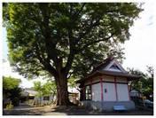 120929_下妻神社.jpg