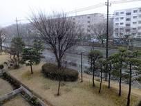 130114_11時.jpg