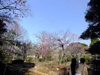 130316_観音寺.jpg