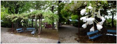 130502_名内東光院.jpg