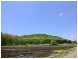 130504_笹原田の緑.jpg