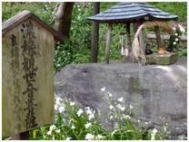 130508_弘法寺石造�U.jpg