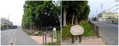 130526_新しい市民の森.jpg