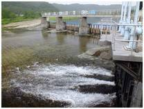 130615_羽村取水堰.jpg