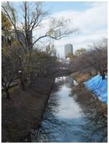 131208_海老川.jpg
