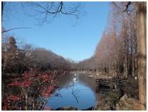 131230_貝柄山公園.jpg