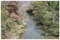 140222_夷隅川1.jpg