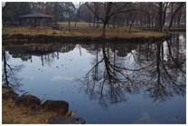 140228_水元公園.jpg