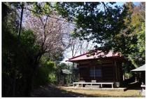 140315_太子堂西輪寺.jpg