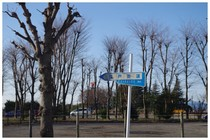 140322_江戸街道.jpg