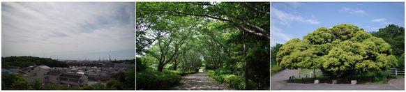 140517_本牧山頂公園.jpg