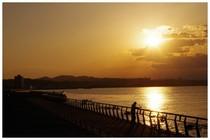 140517_馬堀海岸.jpg