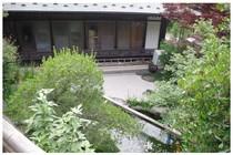 140621_慈眼寺の庭.jpg