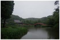 140629_阿字ヶ池.jpg