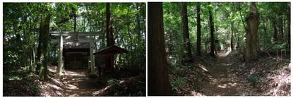140712_平塚八幡神社.jpg