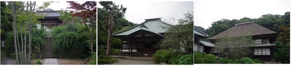 140713_海蔵寺1.jpg