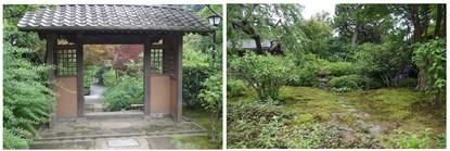 140713_海蔵寺3.jpg