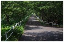 140726_亥の鼻橋先.jpg