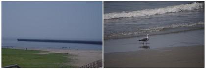 140726_幕張の浜.jpg