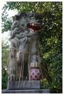 140727_子之神社狛犬.jpg