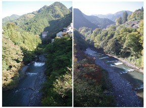 141025_日原川.jpg