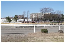 150103_JRA競馬学校.jpg