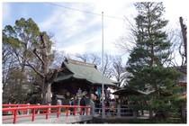 150104_松戸神社.jpg