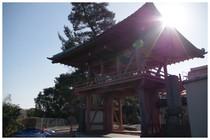 150111_臼井妙傳寺.jpg