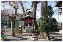 150111_臼井星神社.jpg