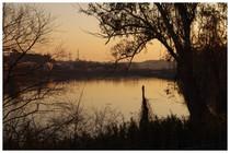 150125_調整池の朝.jpg