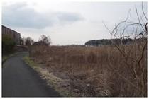 150125_都川沿いの自転車道.jpg