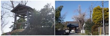 150201_坂戸西福寺.jpg