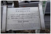 150207_エンジュ通りの訳.jpg