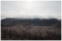 150207_煙りたなびく.jpg