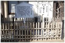 150211_駒どめの石.jpg