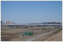 150214_多摩川.jpg