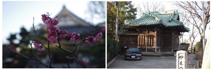 150214_永寿院と妙見堂.jpg