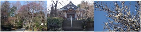 150215_観音寺.jpg