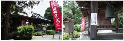 20150620_seya妙光寺.jpg