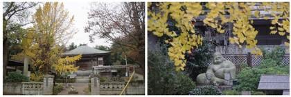 20151123_折立の来迎寺.jpg