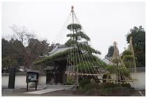 20151223_佛法寺の雪吊り.jpg