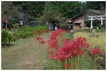20159021_結縁寺3.jpg